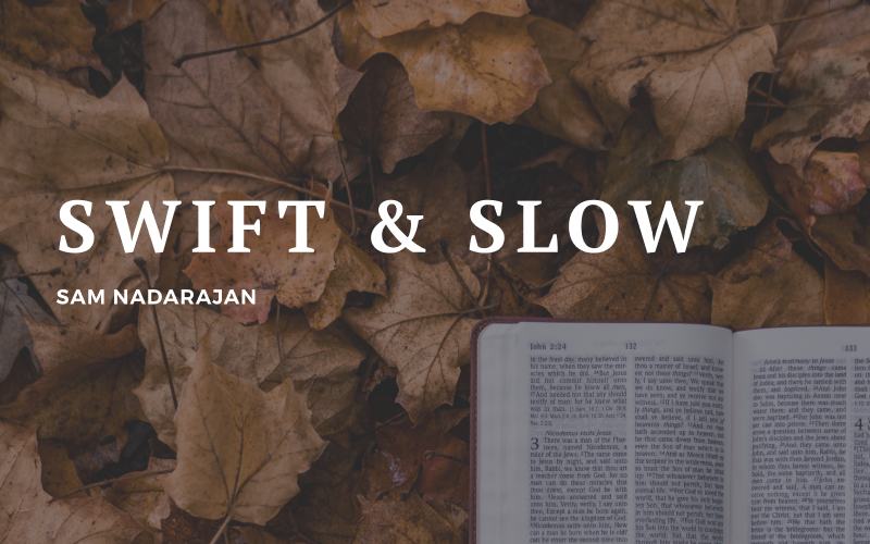 Part 1: Swift and Slow