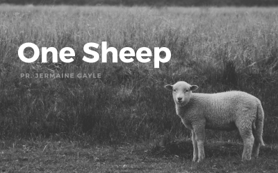 Part 1: One Sheep