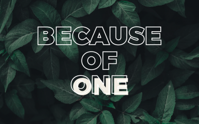 Because of One
