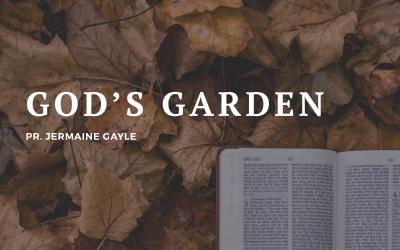 Part 2: God's Garden